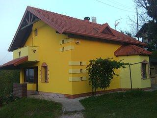 Vineyard in Ludbreg