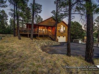 Pine Cone Cabin 717