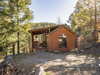 Hideout Cabin 751