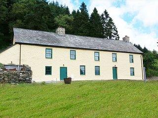 Ffermdy Llanwrtyd Farmhouse - 414291