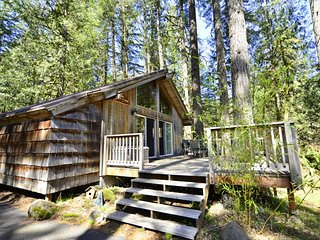 Cozy, waterfront cabin right on the beautiful Sandy River with amazing deck!