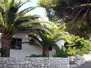Villa Lasta, Drasnice