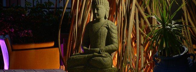 L'espace zen et ombragé