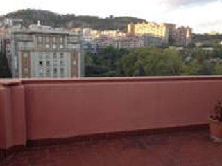 Estupendo ático bien comunicado y espacioso, Barcelona