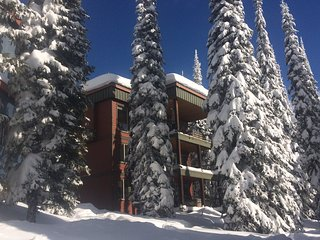 Guilt Suite - Deluxe 5 Bedroom / 4 Bath Home On the Ski-Way