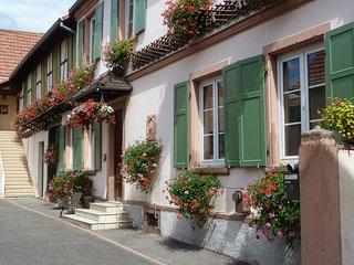 """Appartement """"Les Courlis"""", Hoerdt"""