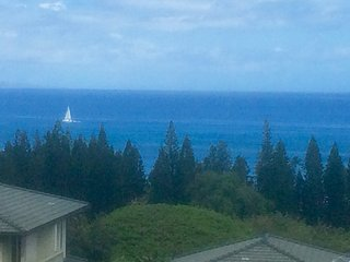 180 Panoramic Ocean Views, Remodeled Unit, Kapalua