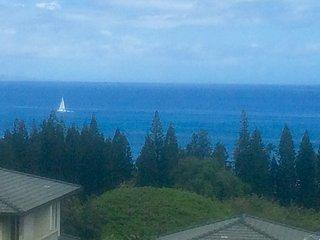 180 Panoramic Ocean Views, Remodeled Unit, Kapalua