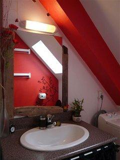 salle d'eau; douche, vasque, lave-linge, WC
