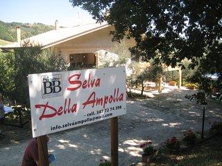 B&B SELVA DELLA AMPOLLA, Civitaquana