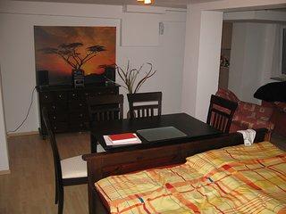 Souterrainwohnung, 1 Zimmer 46 qm + Küche + Bad, Halle