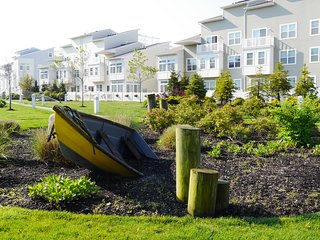 Seaside landscaping.