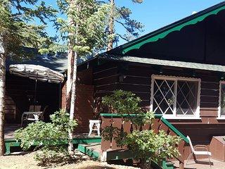 Knickerbocker Trail Retreat - Walk to the Village, Big Bear Lake