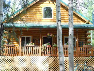 Spacious Modern Cabin, Fairbanks