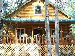 Spacious Modern Cabin