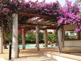 5* EXTRA LGE 2 BED/2 BATH APT. 3 PATIOS,POOL/GARDEN VIEWS,FREE BUS,AIR CON,WiFi.