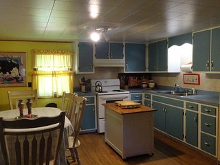 Very Large one BR Handicap Friendly Cabin with ramp sleeps 6 Pet Friendly