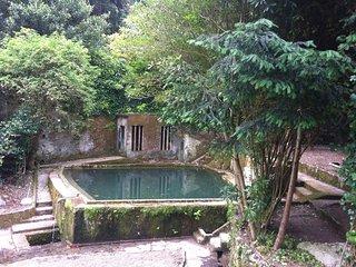Quinta do Castanheiro - Casa das Glicinias - Duplex