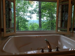 Ozark Spring Cabins #3, King Bed, Giant Spa Tub, Kitchen, Secluded, Private Deck with View, Eureka Springs