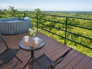 CRT-  Villa Vista Hermosa*NEW HOME*