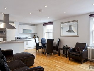 GowithOh - 16040 - Contemporary 2 bedroom apartment in Waterloo - London, Londen