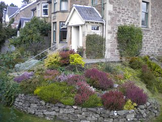 Heather garden and rockery