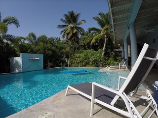 Garden House - Four Bedrooms, Sexy Pool and Porches, Vieques