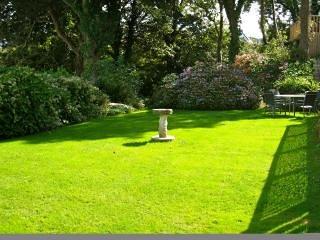 Peaceful garden.