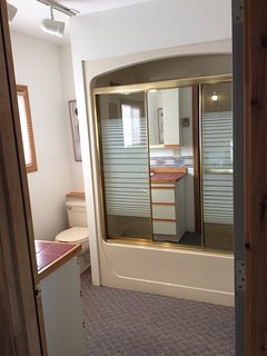 One piece tub and shower with privacy doors