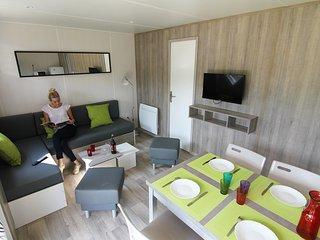 Grand salon-salle à manger avec TV