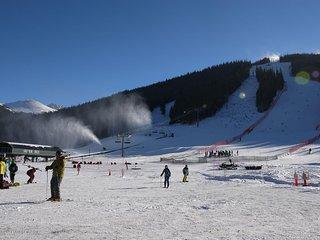 SF204 Snowflake, Copper Mountain