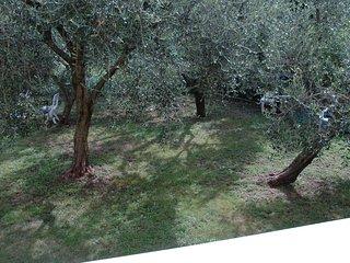 LA CORTE DI MAGU FRONT LAKE APARTAMENT MALCESINE BIANCO 6P, Malcesine