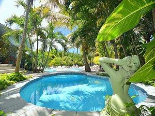VILLA ABSOLUTE ECSTASY....A stunning modern 6BR villa in Orient Bay