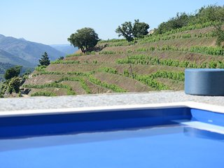View from pool to vines