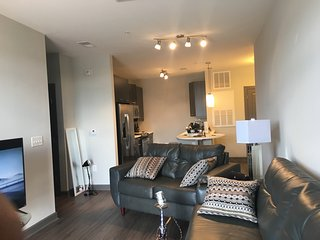 Spacious and luxurious 1 bedroom in buckhead, Atlanta