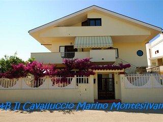 il cavalluccio marino, Montesilvano