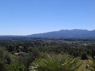 Cosa in collina con vista sulla città di Lucca