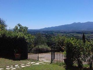 Cosa in collina con vista sulla citta di Lucca