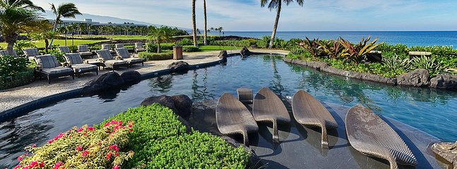 Relax in banana leaf chaise lounges while cooling in the water and watching the whale