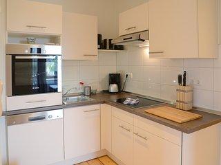 Die Küche mit Backofen, Kühlschrank, Spühlmaschine und Ceranfeld