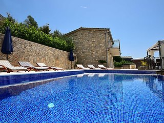 Villa Bellaviasta**** with private pool and garden
