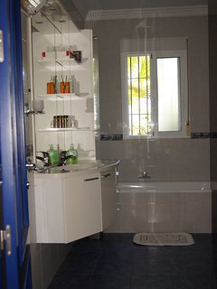 Master bathroom: tub, shower, sink, toilet