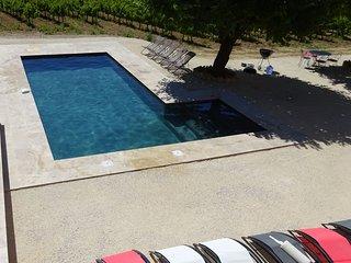 Villa Martin en Provence, piscine privee