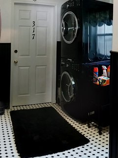 Stacked Washer and Dryer with all the supplies.