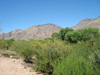 2nd floor 1 bedrm/den with a private patio and Breath taking Moutain Views!, Tucson