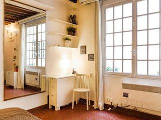 Cozy studio in the heart of Paris
