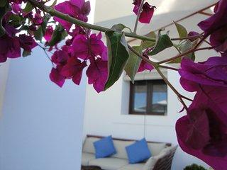 Casa típica ibicenca en el tranquilo campo (Ibiza)