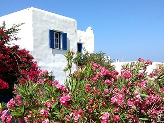 Katikia beachfront peaceful family house-Naoussa