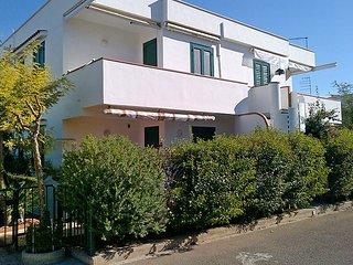 Terenzio #4849, Campomarino