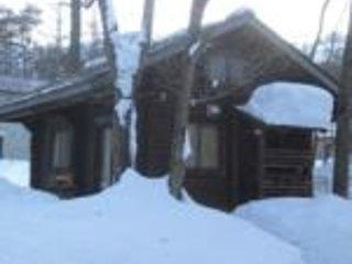 Fully self contained Log Cabin in Hakuba